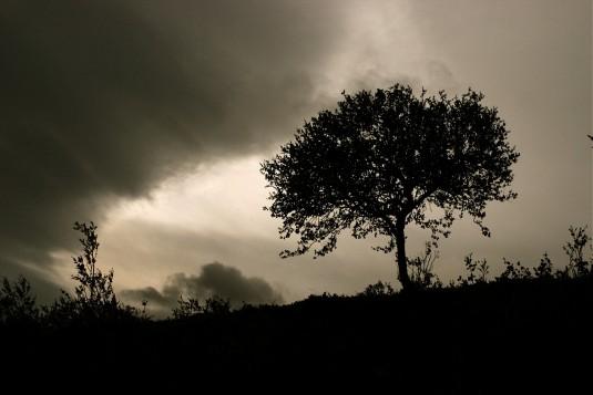 myrsky tulossa